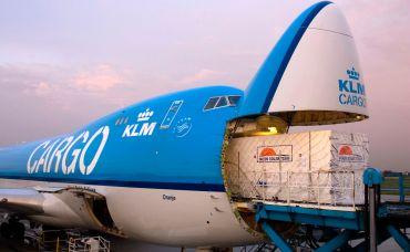 T-rex, Rolls-Royce, tygrys i dzieła sztuki – co kryją magazyny lotnicze KLM?