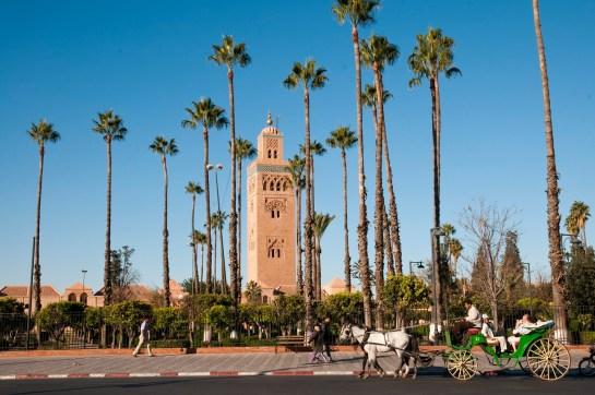 City break w Marrakeszu – perła Maroka na wyciągnięcie ręki