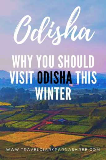 Why You should visit Odisha this winter