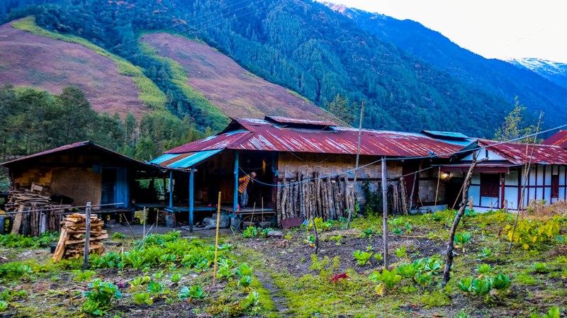 Dembuen Village of Anini_Arunachal Pradesh