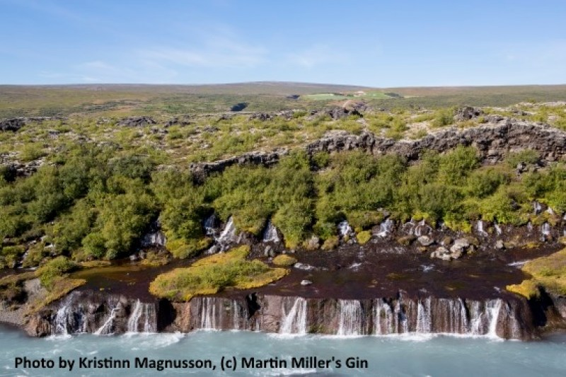 Icelandic Water is the source for Martin Miller's Gin