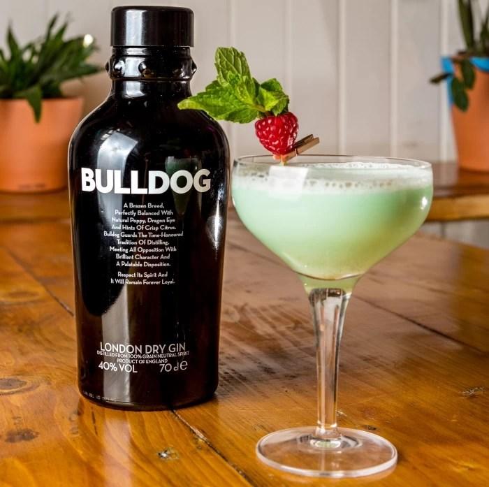 Bulldog Gin bottle and cocktail