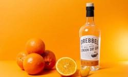 Bottle of Drebble London Dry Gin