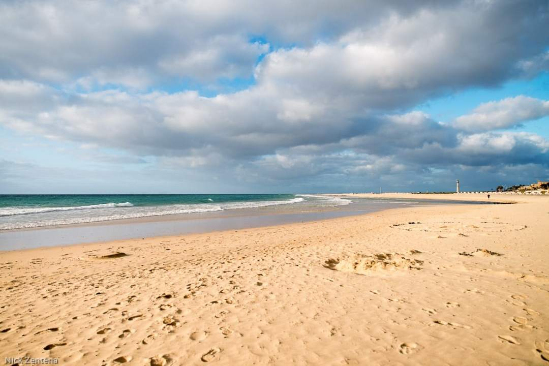 Sandy Playa Matorral