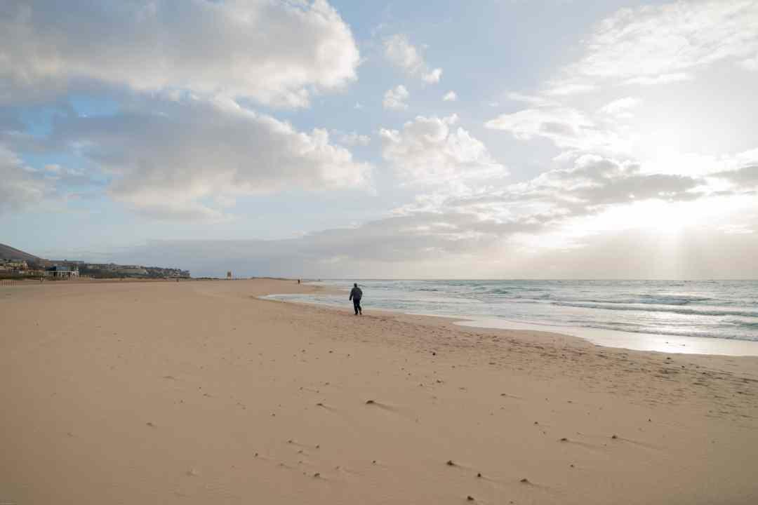 Early morning beach walker Playa Matorral
