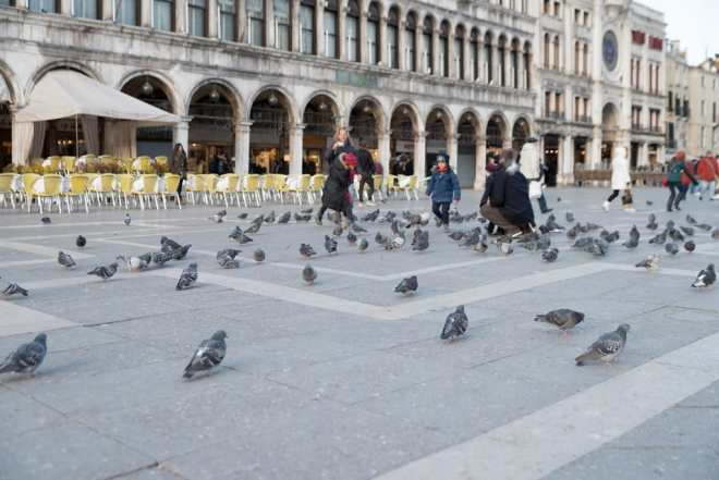 Tourists with the pigeons