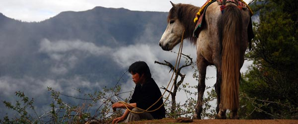 A Bhutanese man and his pony take a break on the trail. Photo credit Kim Campbell.