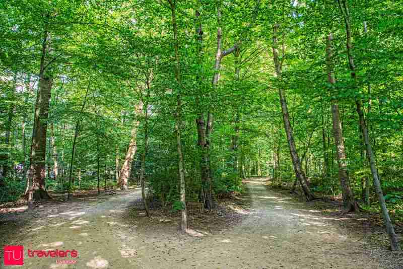Things to do in brussels top 10 sights and attractions for Bois de la chambre bruxelles