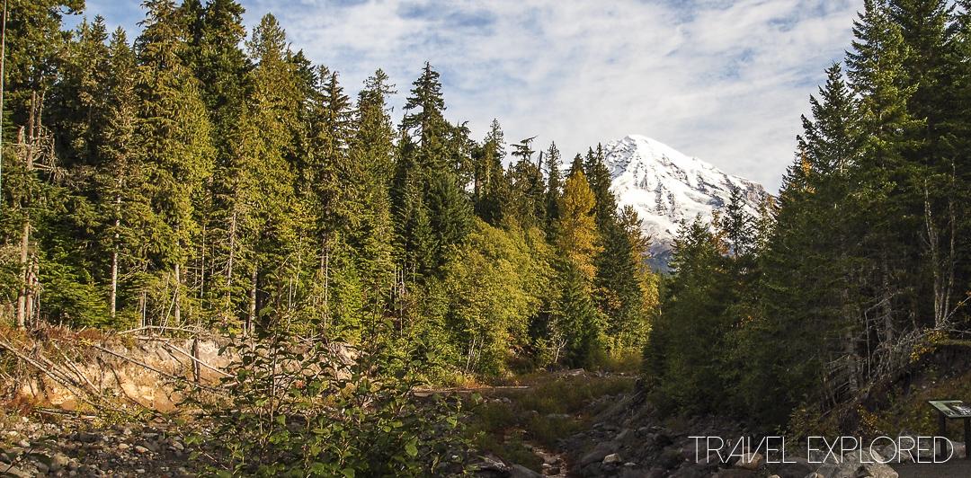 Seattle - Mount Rainier View