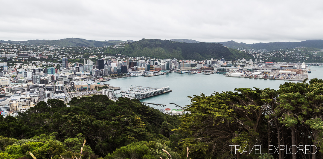 Exploring Wellington New Zealand Travel Explored