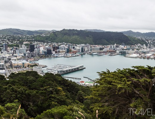 Wellington - Mt Victoria Lookout View