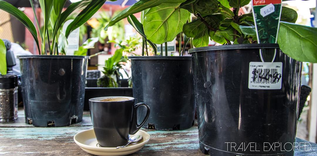 Coffee - The Barn, North Stradbroke Island