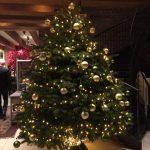 Stadshotel Woerden – tolles Hotel zum Übernachten