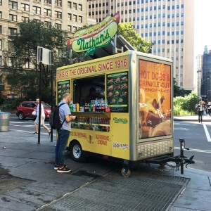 Street Food in New York - Travel for a Living
