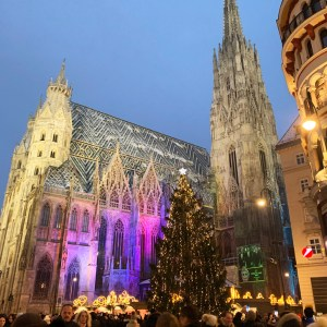 The Best Christmas Market in Vienna - Travel for a Living