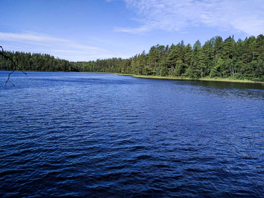 A very blue lake with green trees lining it.