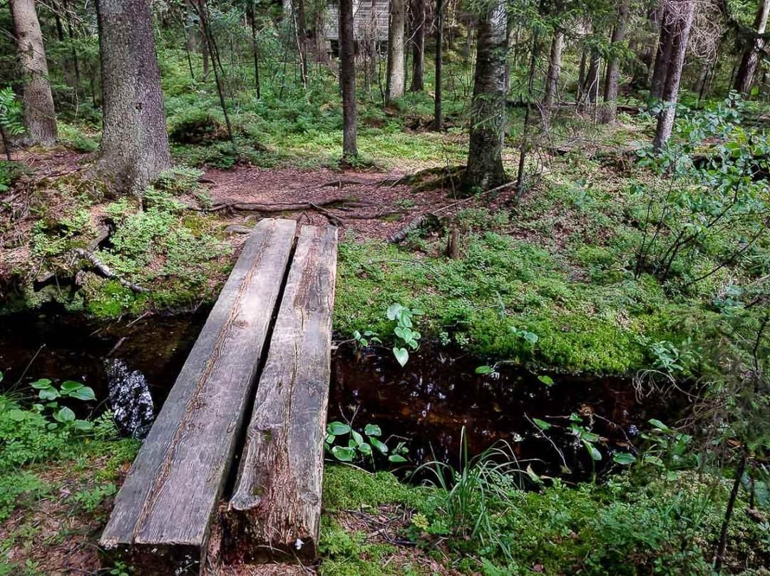 footbridge in the forest in Espoo, Finland