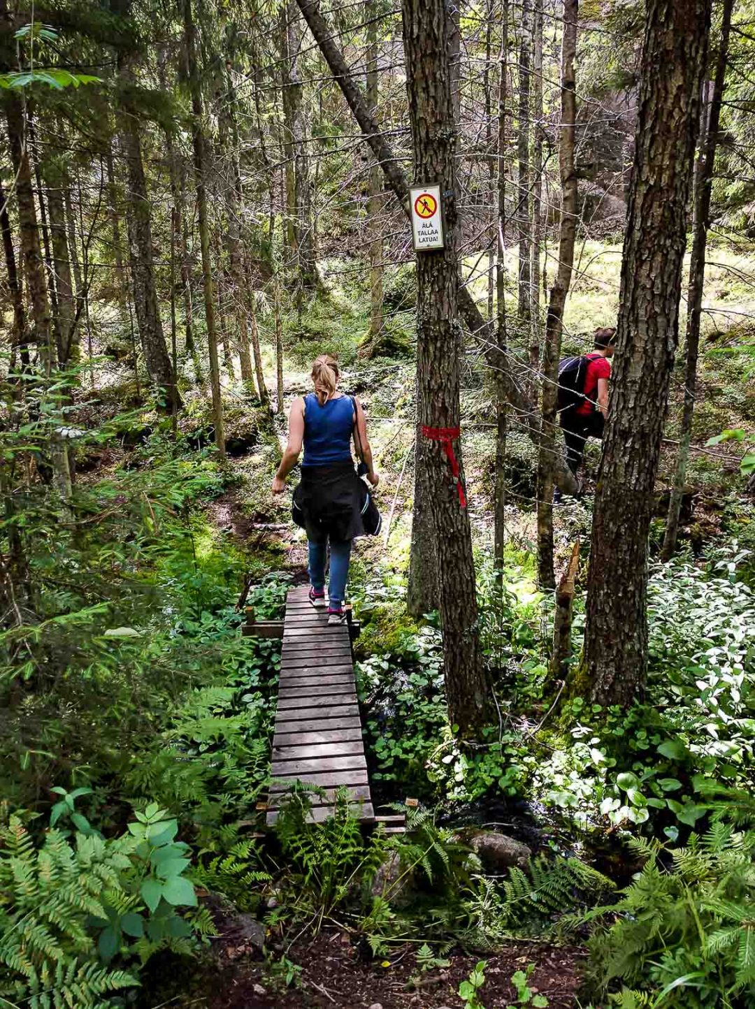 Woman walking on footbridge in forest in Espoo, Finland