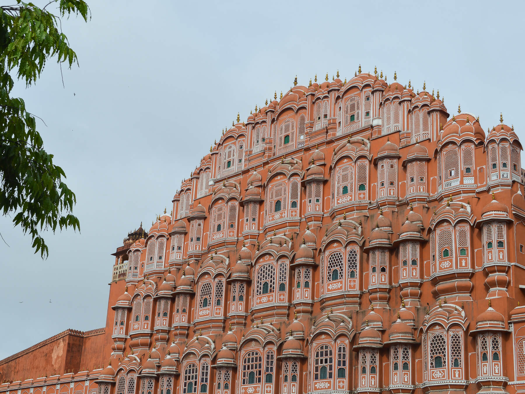 Pink fort with white trim windows in Jaipur