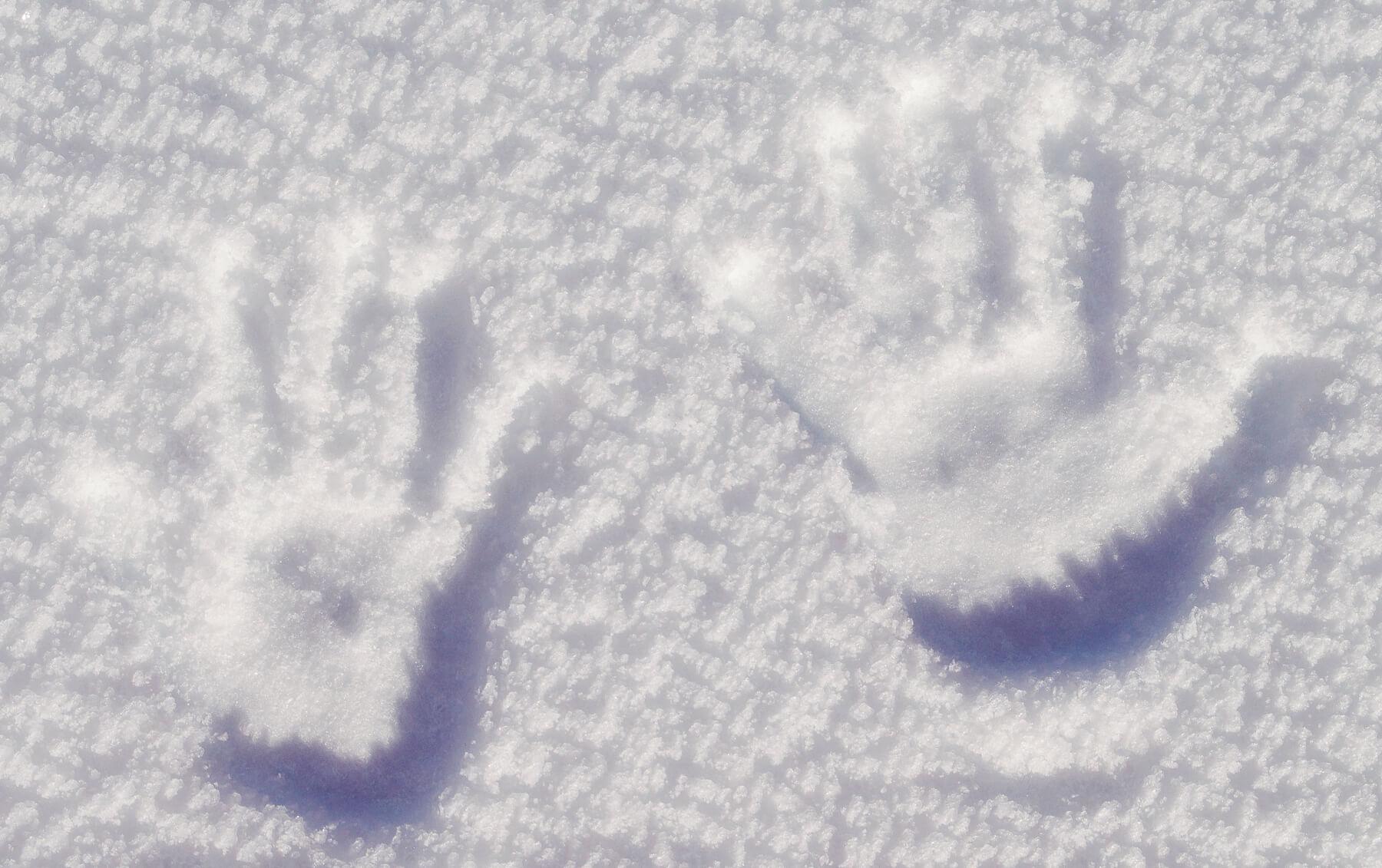 2 Handprints in the Snow