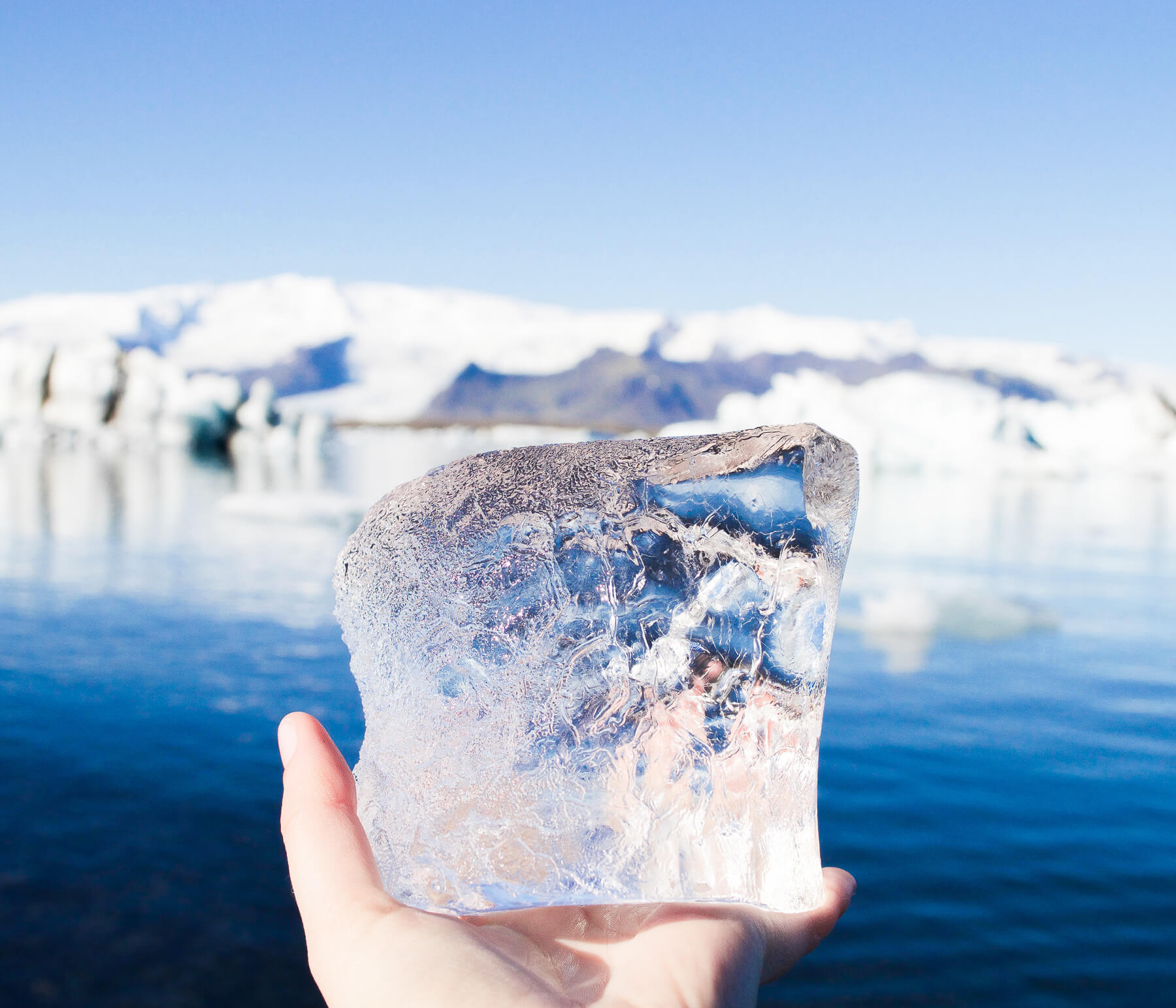 White hand holding big ice cube in front of Glacier Lagoon