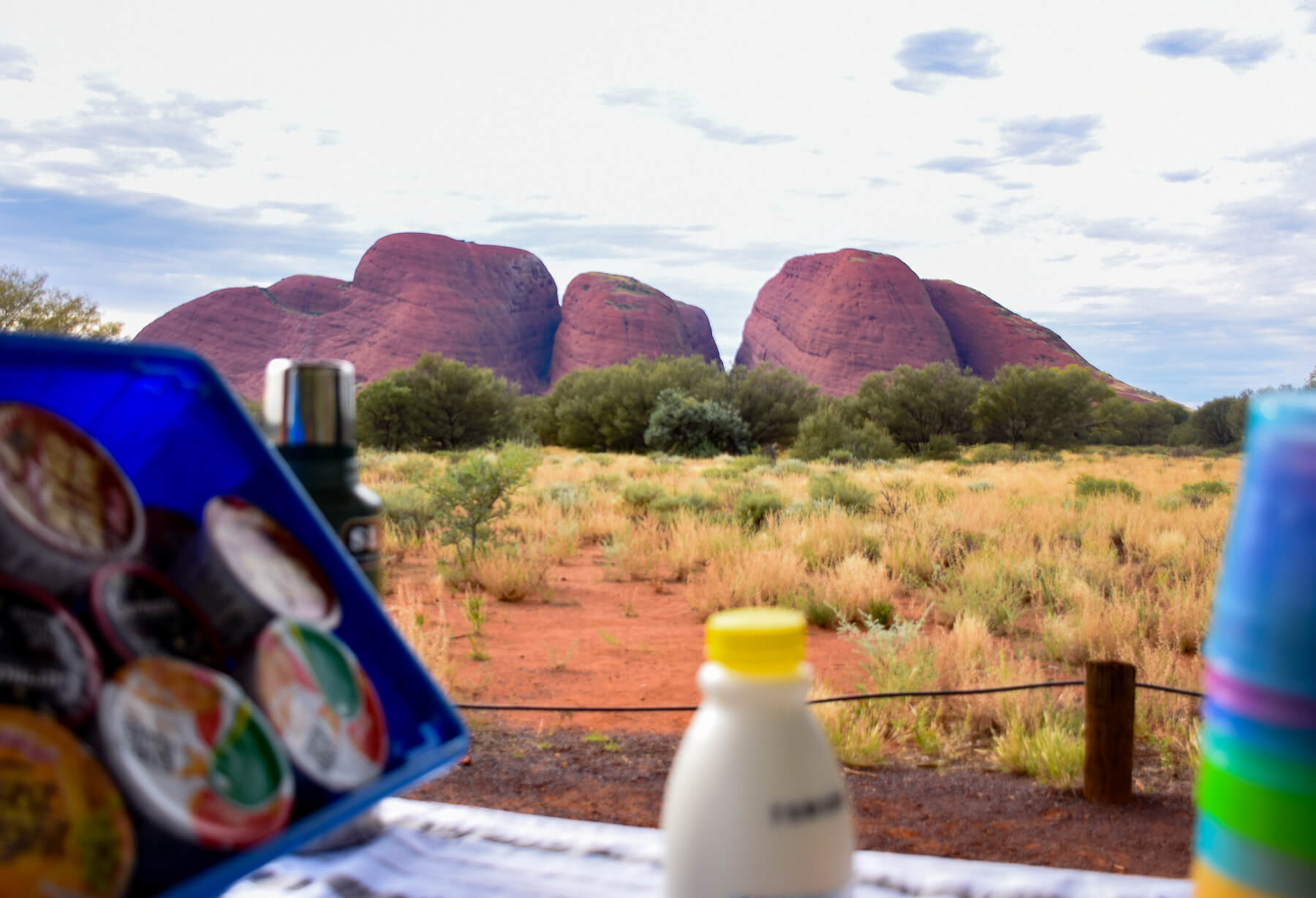 Milk bottle and cereal infront of the Olgas