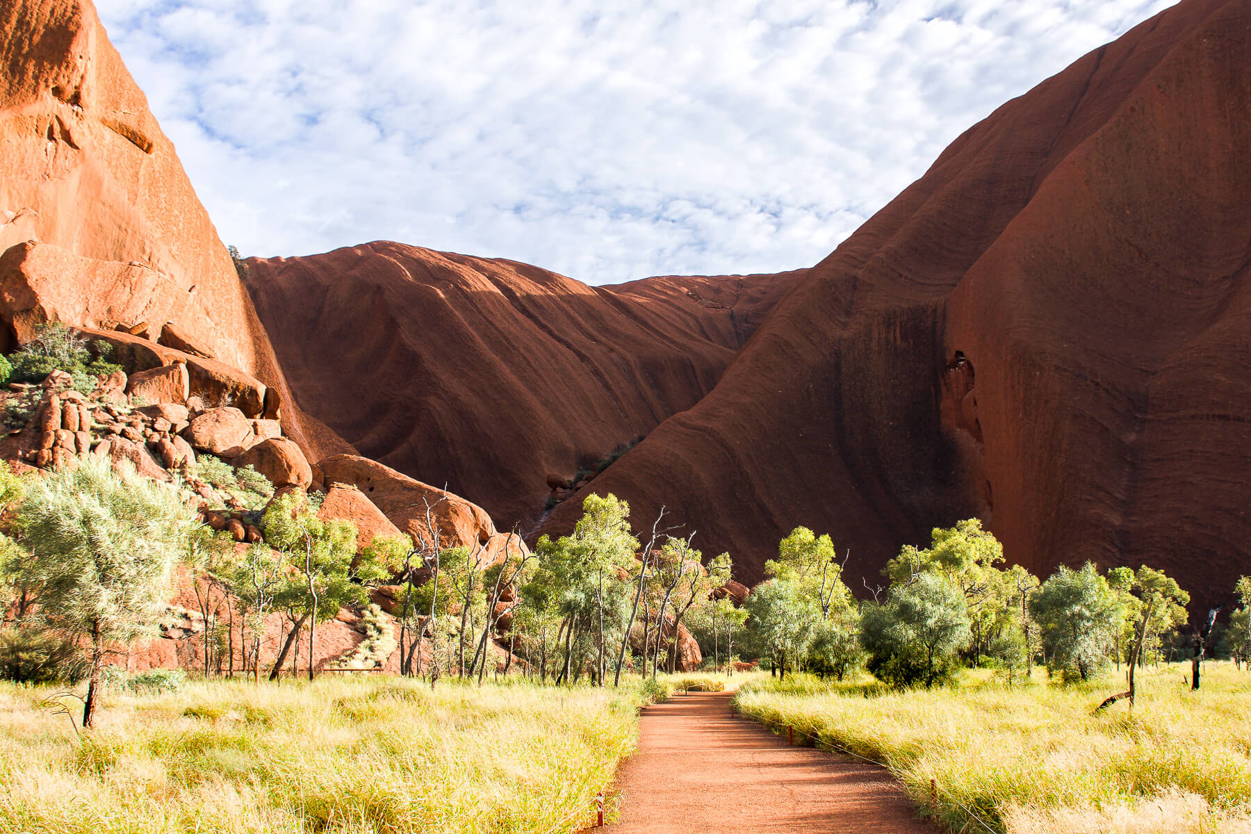 Path leading through trees to Ayers Rock