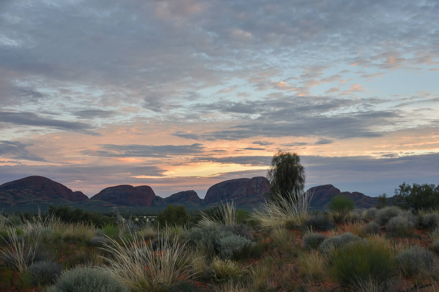 Sunrise forming over Kata Tjuta in the distance
