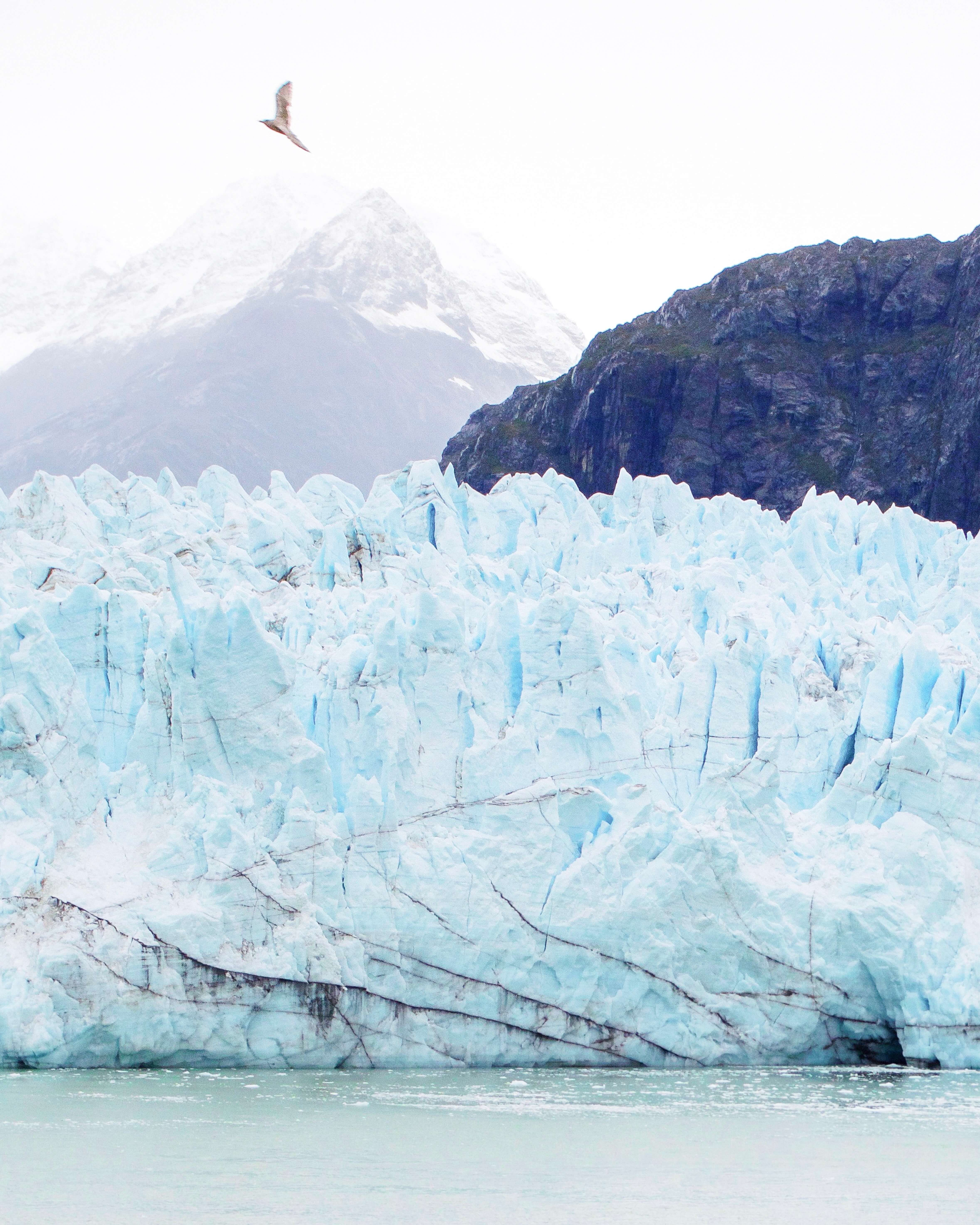 Big flying above rugged glacier front in front of distant foggy mountain peak