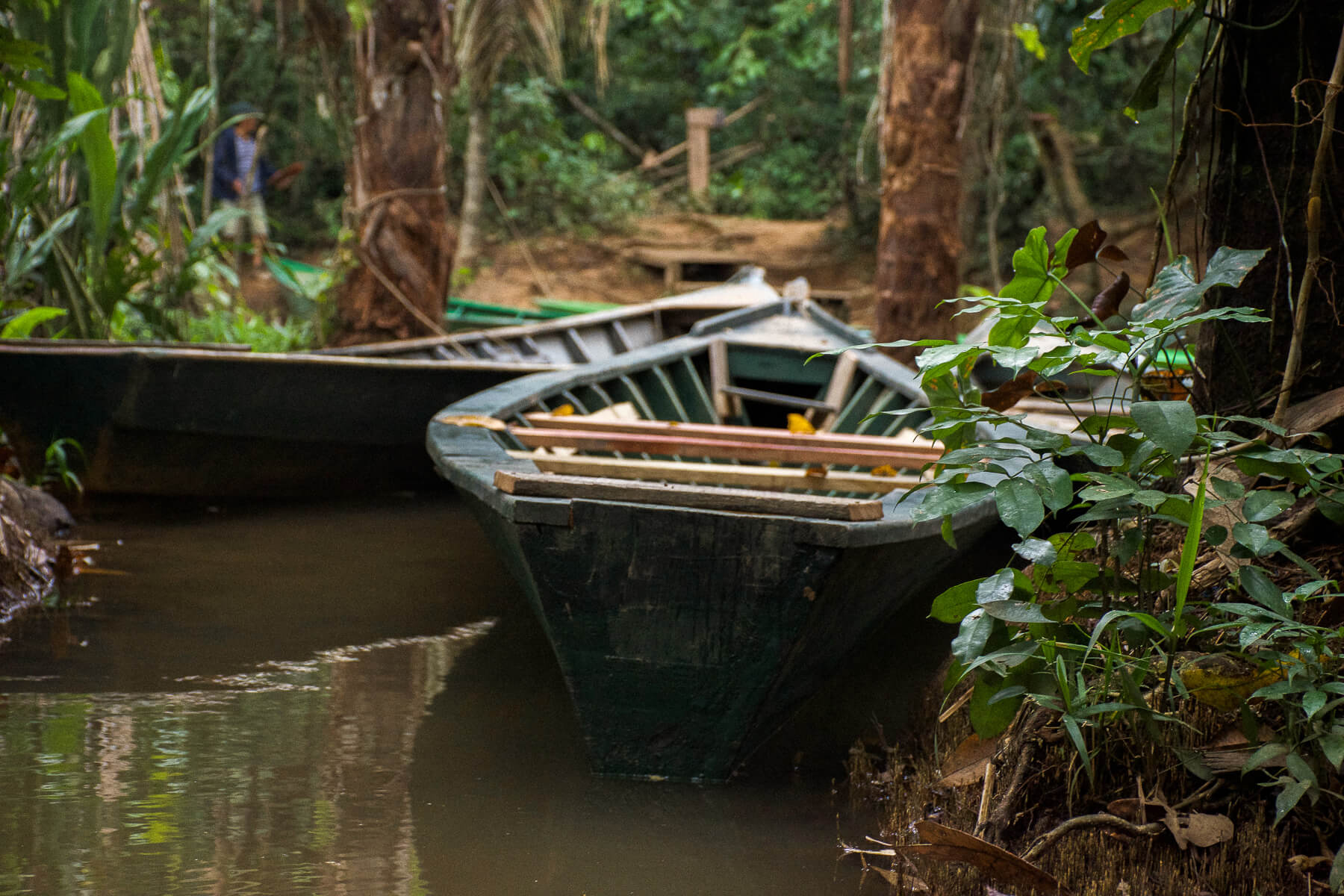 2 river canoes banked in the water within the rainforest