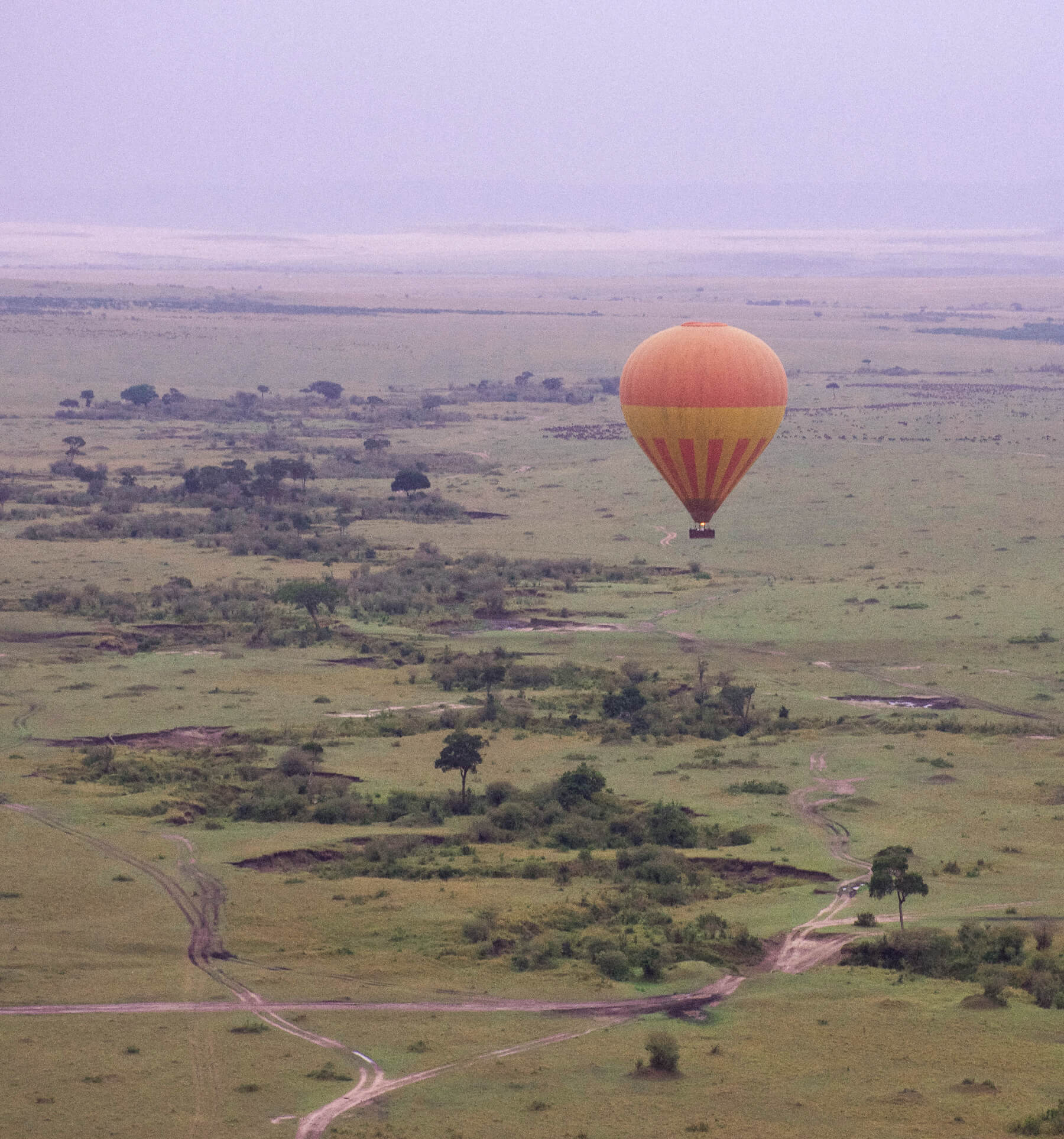 An orange hot air balloon flying over the Maasai Mara and a line of rugged trees