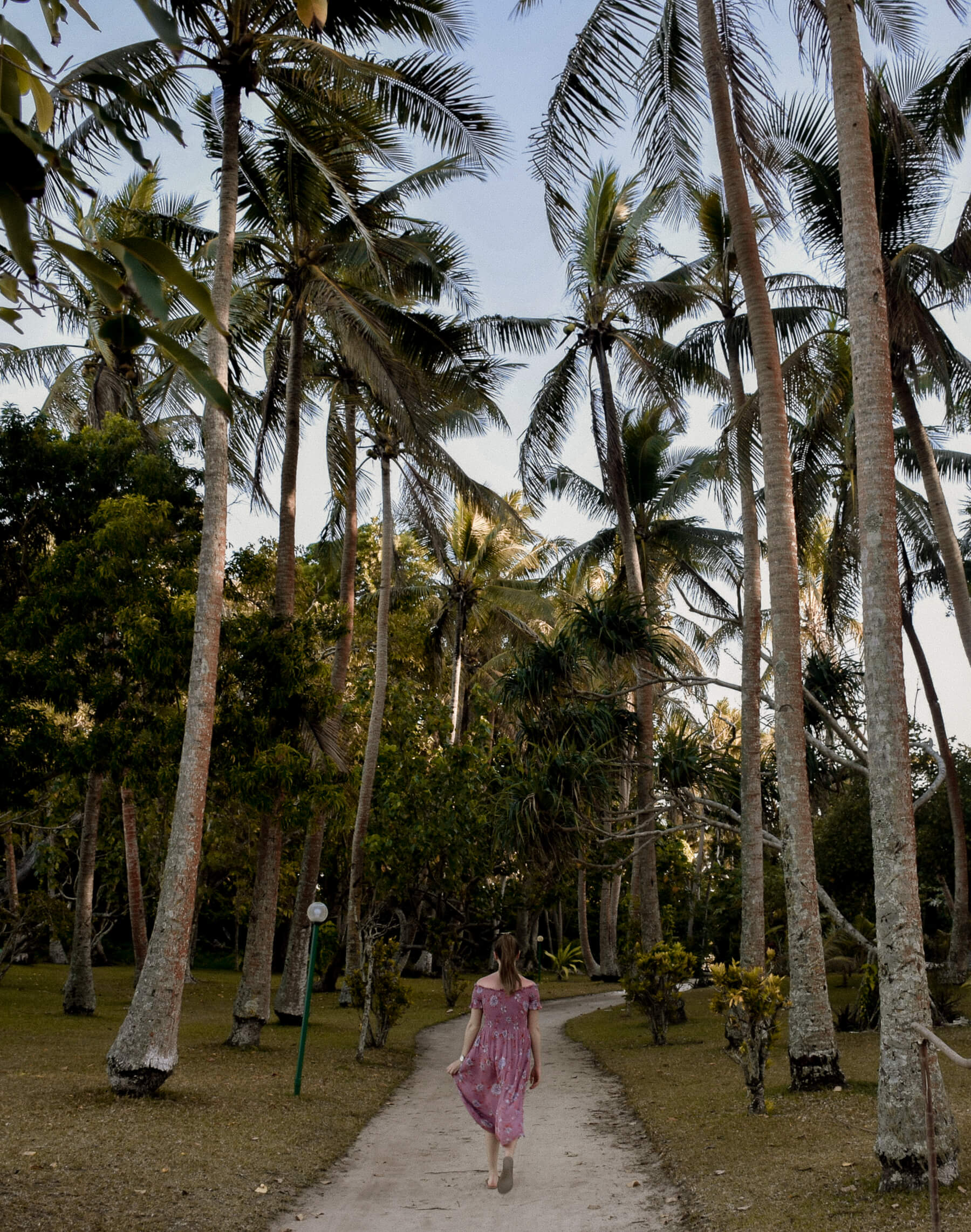 A girl in a pink flow dress walking away from the camera through a line of tall palm trees