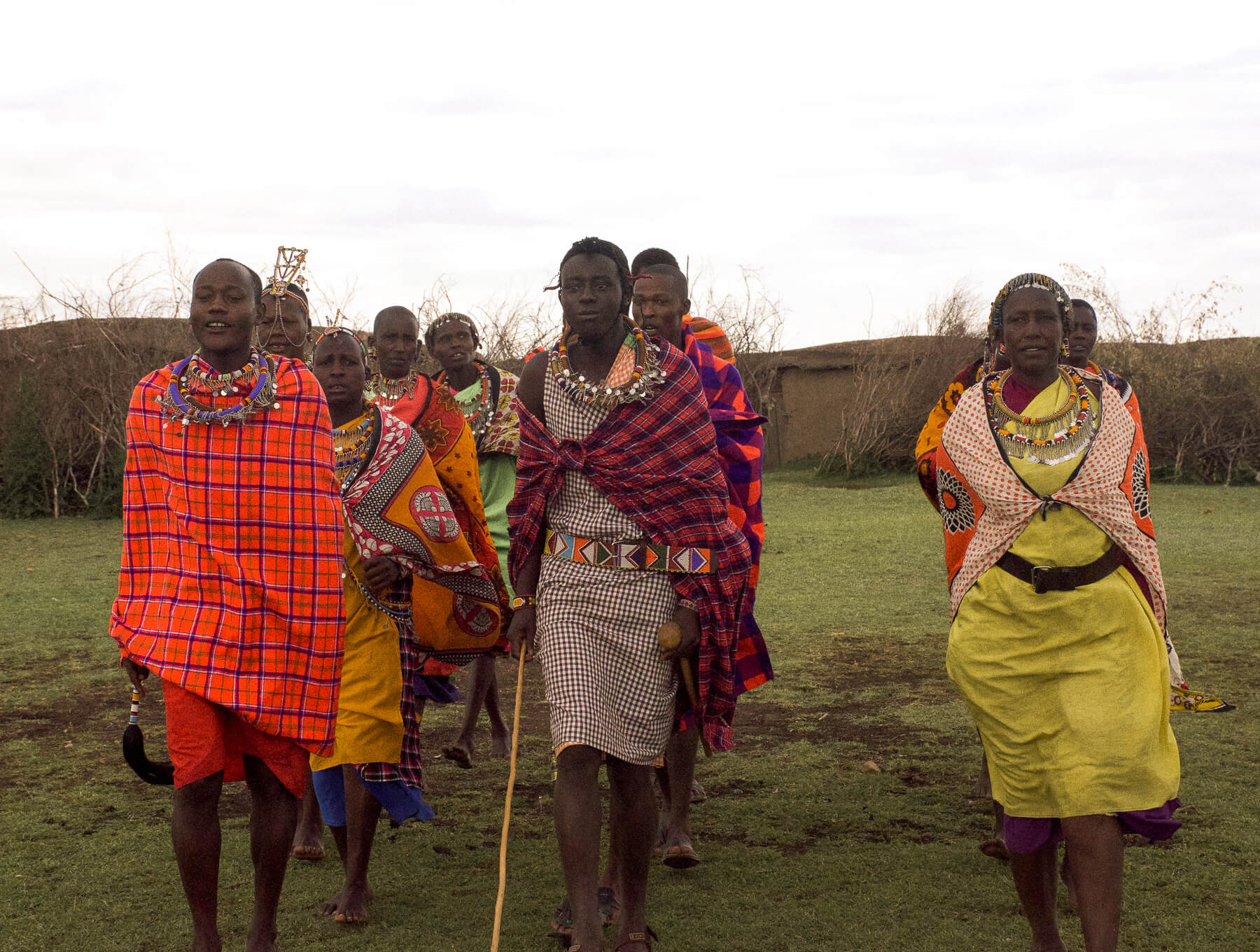 Maasai tribe walking towards the camera in their traditional dress