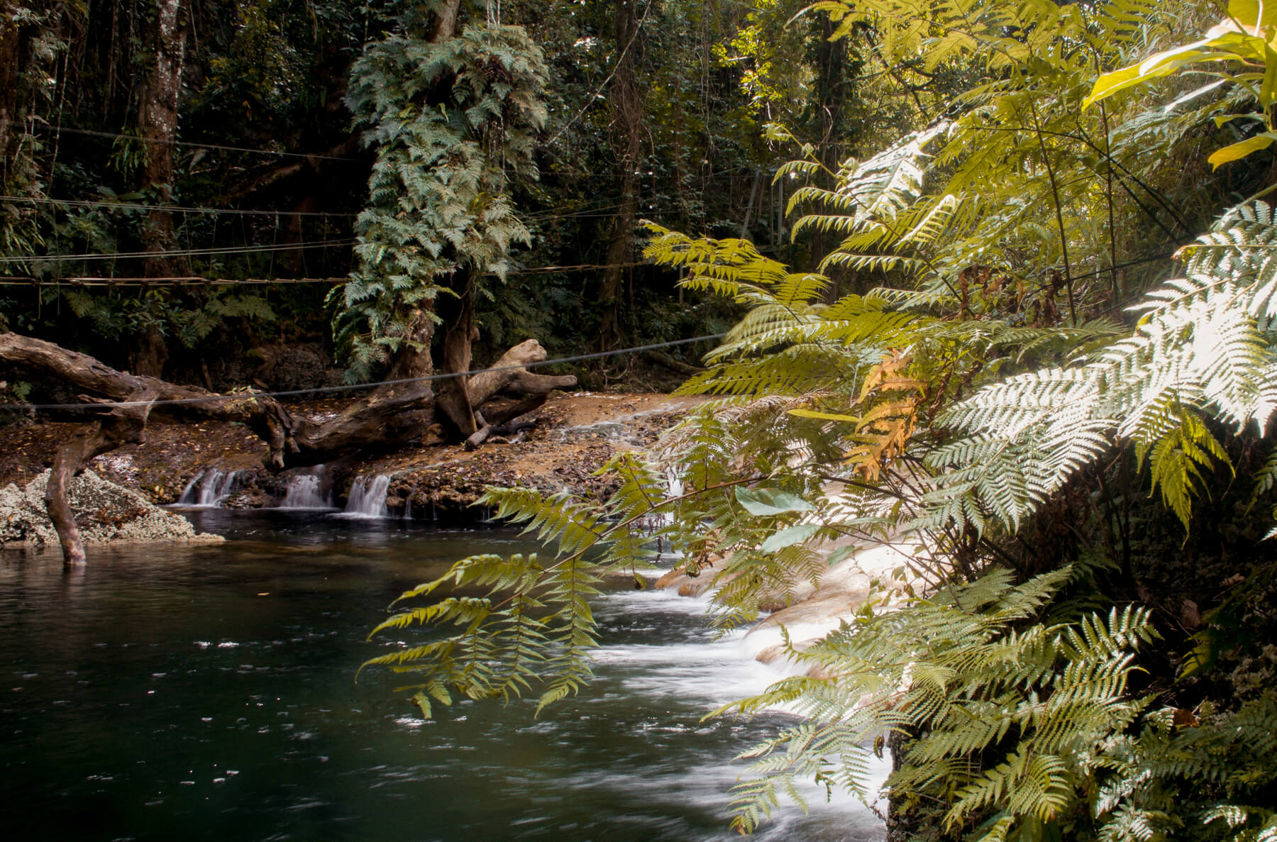An image of a swimming hole in the forest of Vanuatu ' Eden on the River '