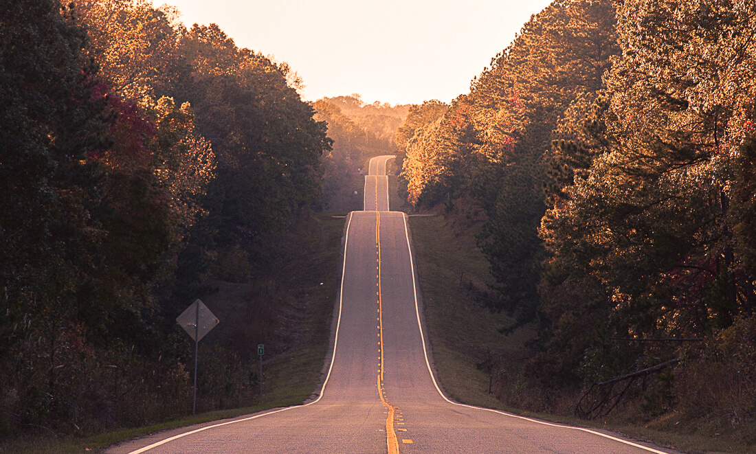 A long straight road between luscious Autumn trees
