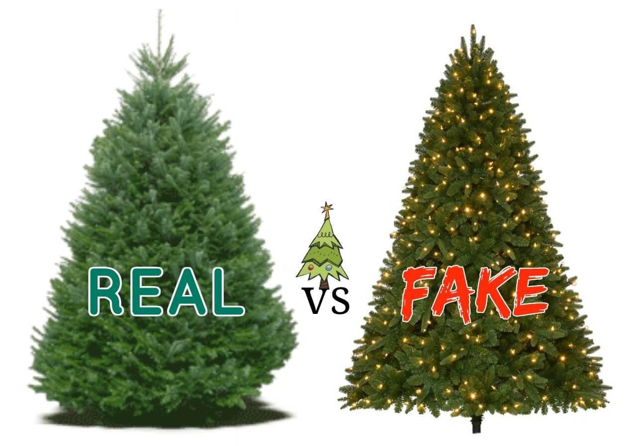 Real VS Fake Christmas Tree Debate