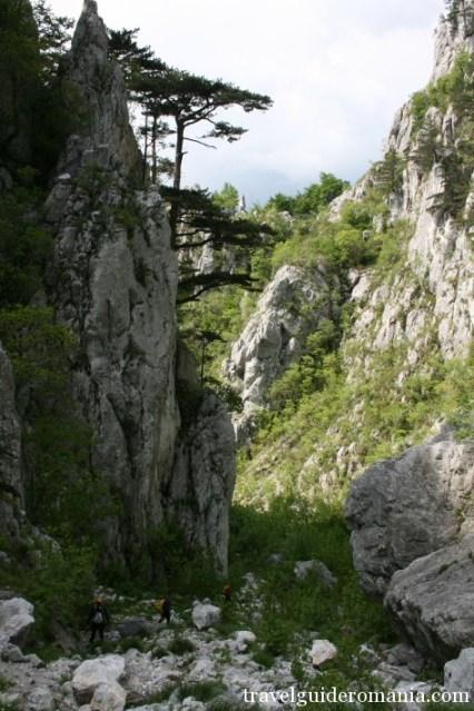 limestone lanscape at Domoglet Natural Park