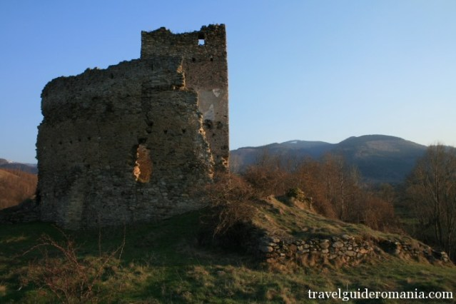 Malaiesti fortress -near Salasu de sus