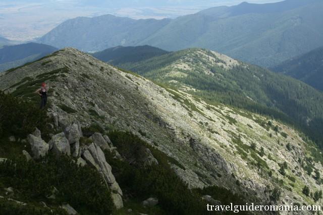 Lolaia ridge - Retezat National Park