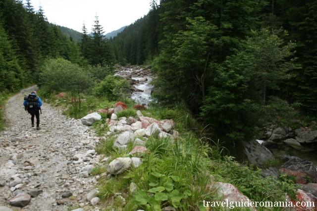 Pietrele valley - Retezat national Park