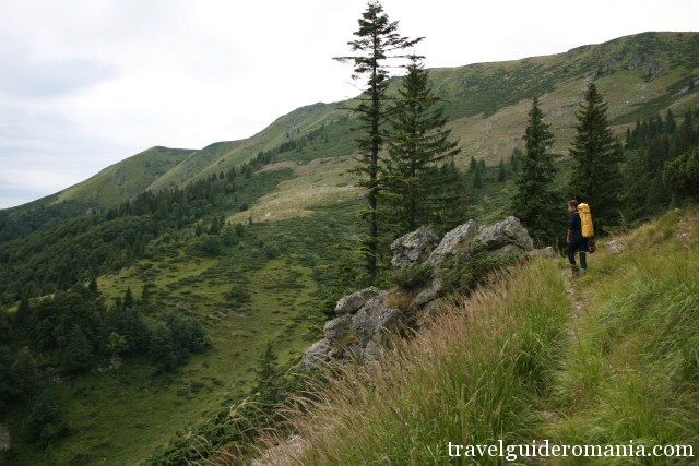 Varasoaia plateau in Padis tourist area - Apuseni Nature Park