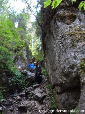 touristic track in Padis area - Apuseni Nature Park
