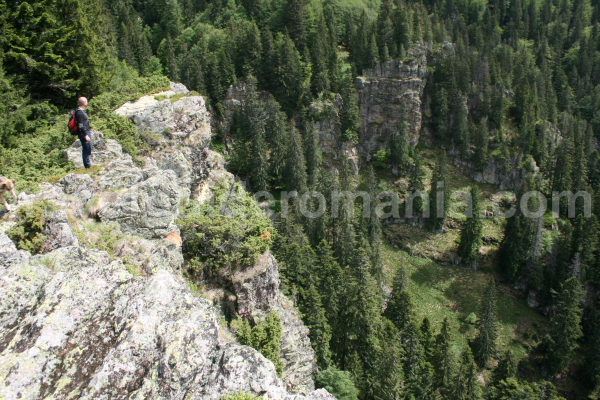 Snakes valley in Apuseni mountains