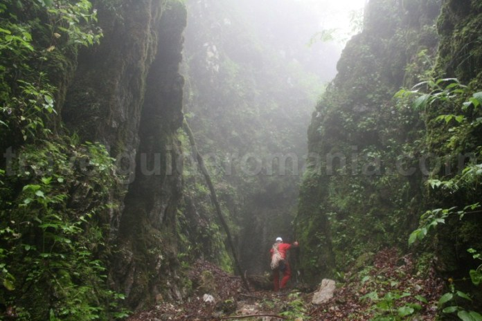 intrarea in canionul Cheia Rea - Muntii Apuseni