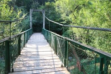 Intrarea in Cheile Turzii - Muntii Trascau - Romania