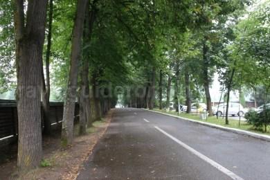 Acces Manastirea Putna - Bucovina