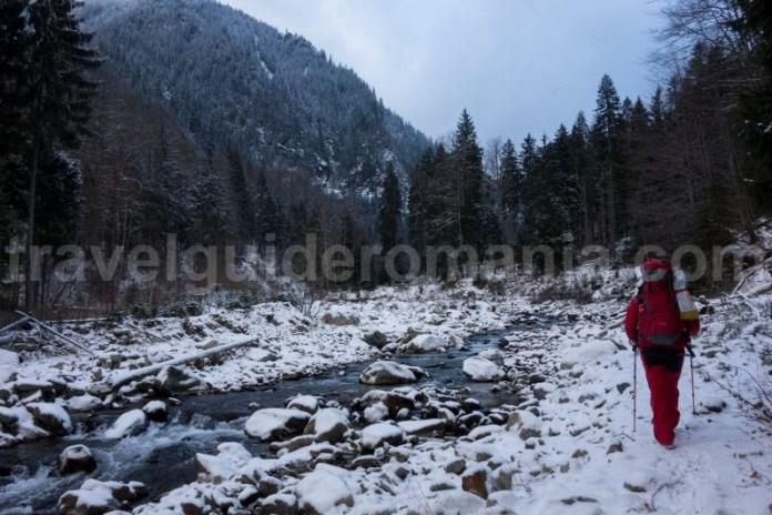 Urcare pe Valea Branul spre refugiul Gugu - Muntii Godeanu