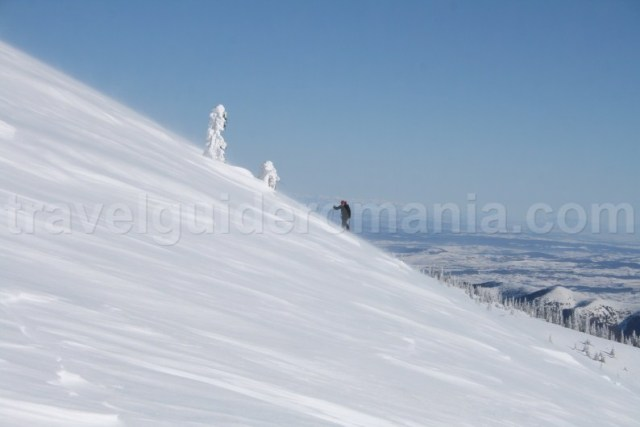 Excursii montane organizate - Muntii Apuseni - Masivul Vladeasa