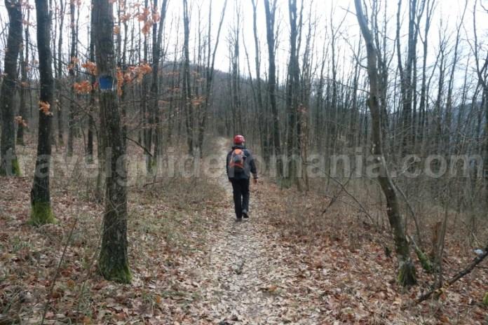 Marcaj turistic in Muntii Padurea Craiului