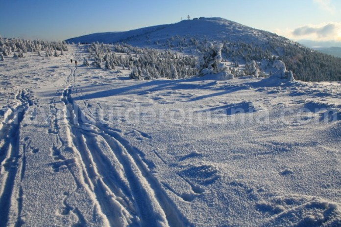 Trasee marcate din muntii Vladeasa